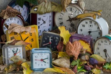 Several different clocks sitting in a pile of fallen leaves