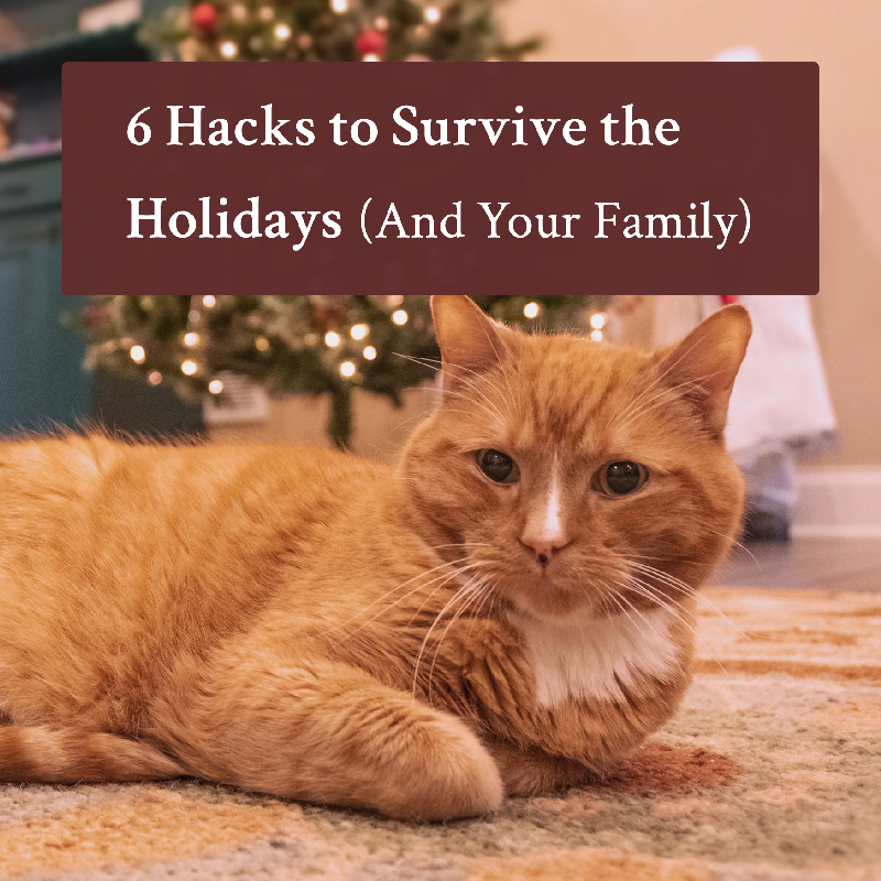 6 Hacks to Survive the Holidays (And Your Family)